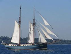 Schiffs-ID-Nr.: 135