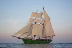 Schiffs-ID-Nr.: 195