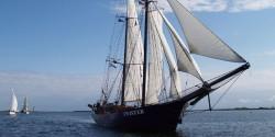 Überführungstörn zur Hansesail: KIEL - ROSTOCK