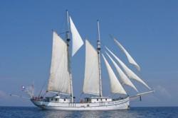 Schiffs-ID-Nr.: 410