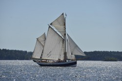 Mit der Tide in die Ostsee: von Glückstadt nach Flensburg