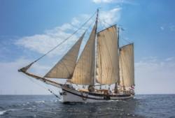 Fahrt zu Ostern 2020:  Ijsselmeer / Wattensee (NL)